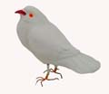Golu Miniature Clay Dove White
